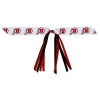 Athletic Logo Streamer Ponytail Bow