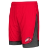Colosseum Athletic Logo Gray Side Basketball Shorts