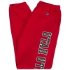 Cover Image for Mens Utah Utes Champion Sweatpants