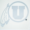 Image for 7 Inch Silver Athletic Logo Decal