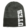 Image for Under Armour UTES Beanie