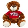 Image for Brown Utah Teddy Bear